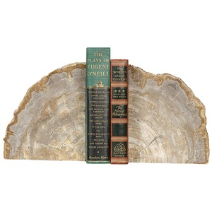 Petrified Bookends with Rough Edges | Noir