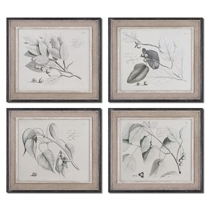 Sepia Leaf Study Wall Art | The Uttermost Company
