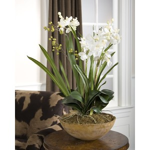 Moth Orchid Planter | The Uttermost Company