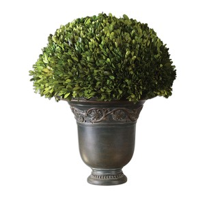 Preserved Boxwood Globe | The Uttermost Company