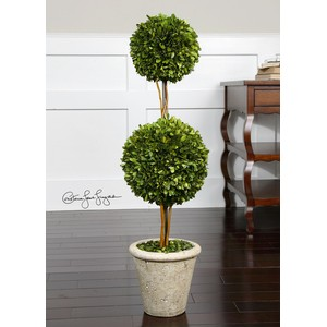 Preserved Boxwood Two Sphere Topiary | The Uttermost Company