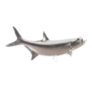 Tarpon Fish in Silver Leaf