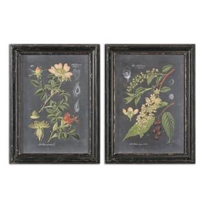 Midnight Botanicals Art