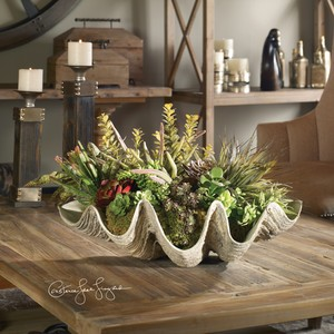 Sea Coast Succulents | The Uttermost Company