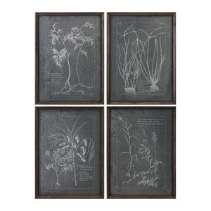 Root Study Art