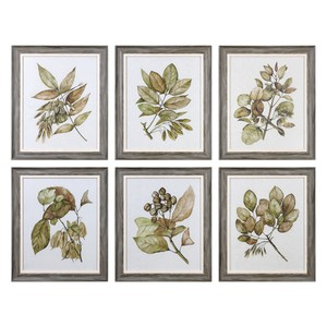 Seedlings Art - Set of Six | The Uttermost Company