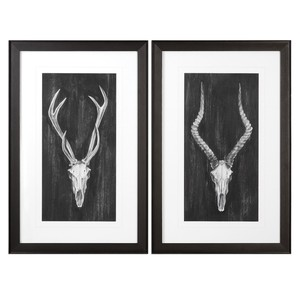 Rustic European Mounts Art