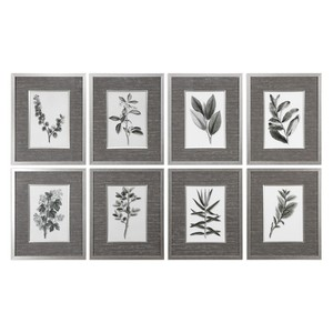 Sepia Gray Leaves Prints - Set of Eight