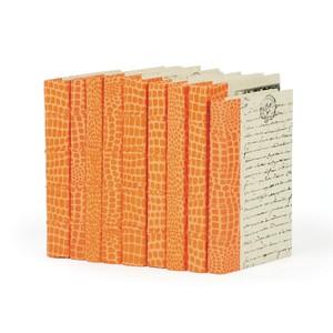 Linear Foot of Faux Croc Orange Books   Park & Main