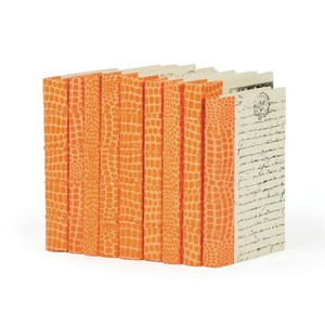 Linear Foot of Faux Croc Orange Books | Park & Main