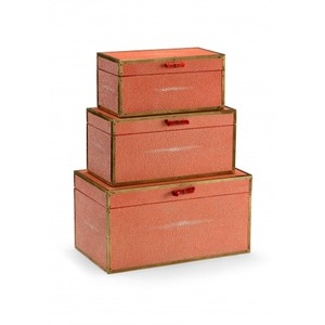 Cousteau Boxes in Coral