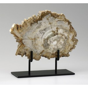 Medium Petrified Wood on Stand | Cyan Design