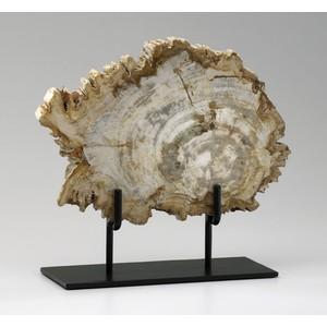 Medium Petrified Wood on Stand | Cyan Design
