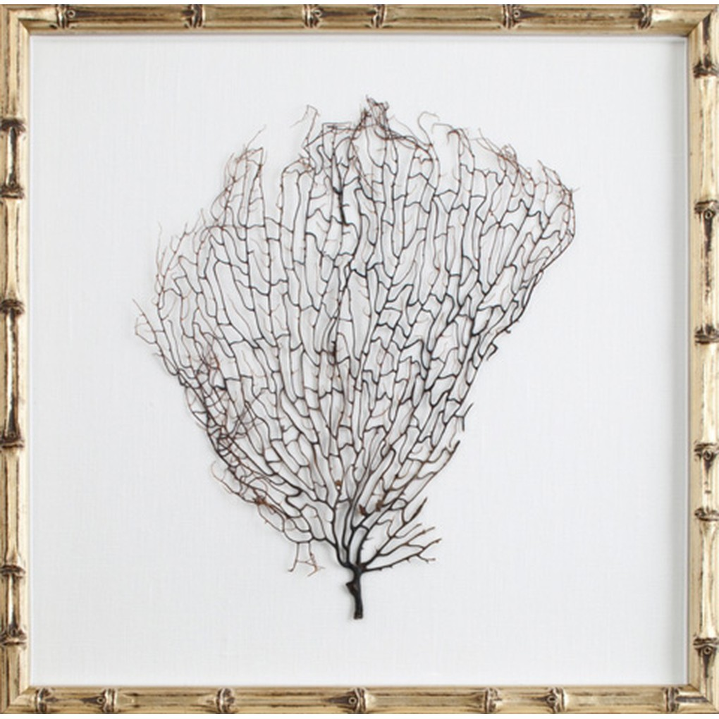 Natural Coral Sea Fan Art | Mirror Image Home
