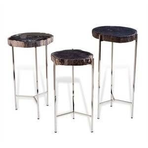 Banten Petrified Wood Drink Table