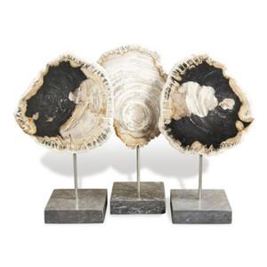 Set of Three Petrified Wood Trio | Interlude Home