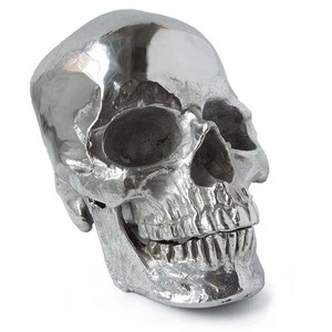 Polished Nickel Metal Skull