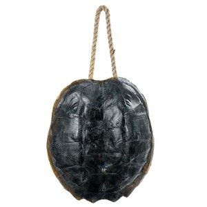 Turtle Shell Accessory | Regina Andrew