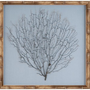 Natural Bamboo Framed Sea Fan | Mirror Image Home