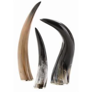 Set of Bernard Horns | Arteriors