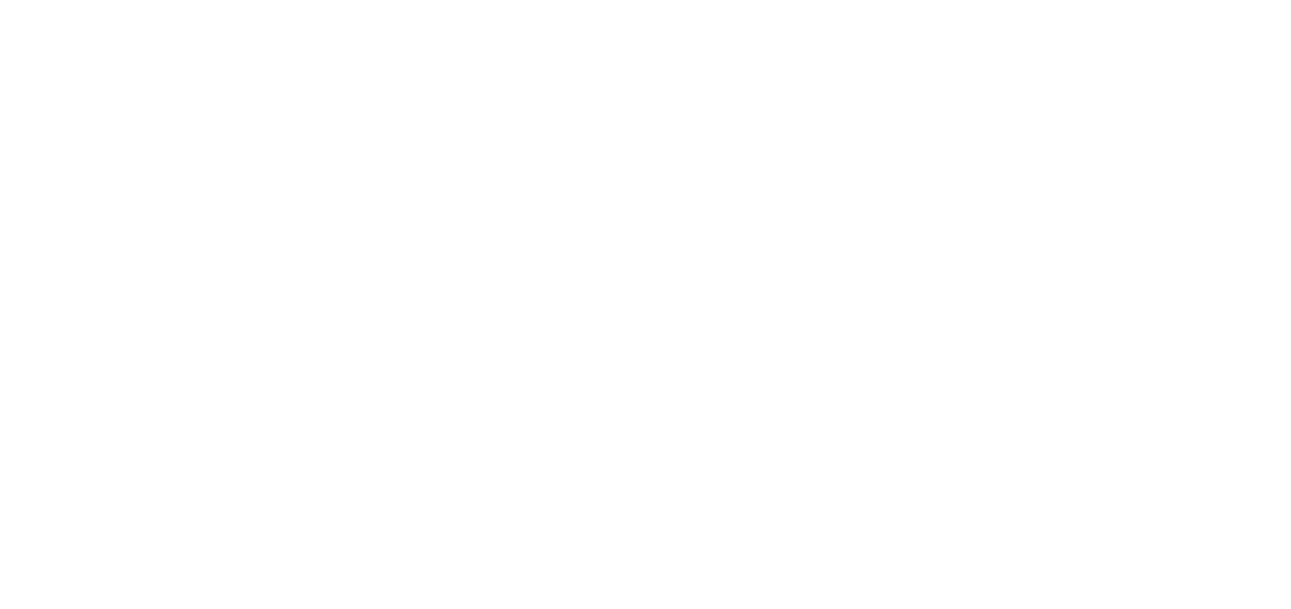 Paint Anything logo